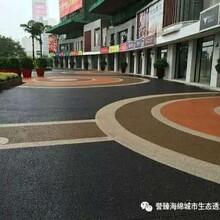 许昌彩色透水路面/透水混凝土地坪/排水路面厂家直供图片
