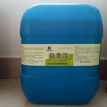 发酵饲料优势来源于菌种图片
