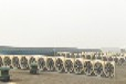 漳州负压风机厂家漳州负压风机批发漳州负压风机品牌