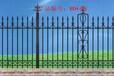 合肥蜀山铁艺围栏护栏栅栏批发报价生产家