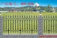 供应合肥包河围栏护栏栅栏批发报价别墅栏杆等