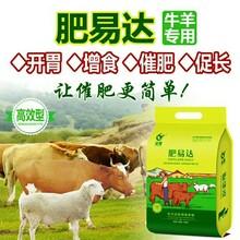 怎么养牛长得快肉牛吃熟料长的快牛催肥偏方图片