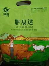 肥易达效果怎么样育肥羊吃啥长得快育肥羊吃什么激素长的快图片