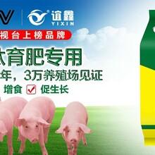 猪吃什么长的快偏方猪用催肥添加剂养猪猛长偏方图片