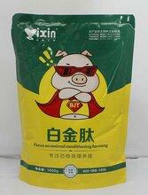 养猪一日长4斤秘方养猪吃什么长得最快猪吃什么催肥图片