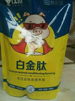 小猪吃什么长得快猪吃什么饲料长的快养猪一日长10斤秘方