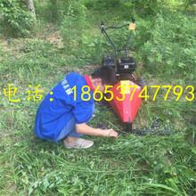 电动式园林割草机圆盘式割草机手推式快捷便携除草机图片