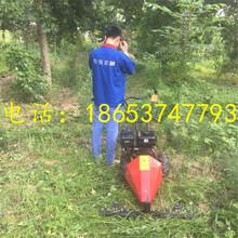 携带方便轻型割草机草原果园专用除草机大棚除草机图片