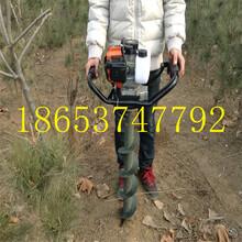 自产自销电线杆挖坑机大马力挖坑机质保图片