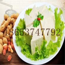 精品直供小型豆腐机不锈钢豆腐机欢迎选购图片