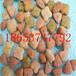 厂家直供高效饲料颗粒机养殖饲料颗粒机科达