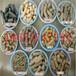 科达直供花生壳燃料颗粒机锯末制粒机生物质压块机质优价廉
