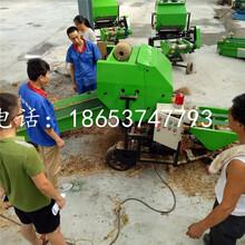 苜蓿草发酵电动包膜机省人工简单便携式打捆机图片