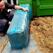 大功率连续生产青贮牛饲料包膜机不怕风吹日晒图片