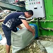 生产效率高自动化青贮牧草打捆包膜机科达直销图片