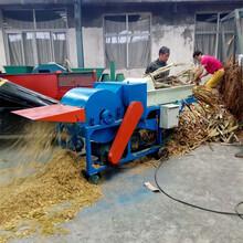 自動喂料秸稈苜蓿草揉絲鍘草機稻草野生草粉碎機簡單方便圖片