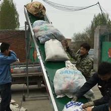 PVCpu輸送機生產定制污泥油泥輸送機酒糟煤渣炭渣輸送機一機多用圖片