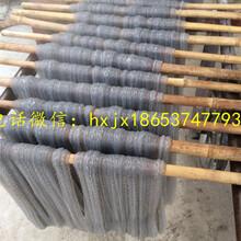 生产效率高一次成型粉条机扁粉宽粉机品质保证图片