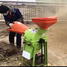 易拆易修大产能粉碎机高效率花生秧豆秸棉花秸粉碎机树枝粉碎机安全不伤人图片