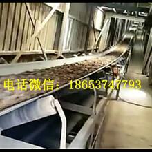 酸奶输送机纸箱输送机款式齐全质优价廉图片