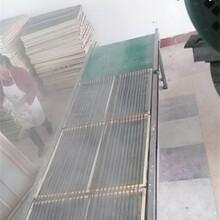 多功能新型粉絲機河北140粉條機漏粉條機器圖片