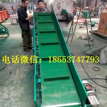 爬坡皮带机流水线专业代办皮带输送机厂泰安图片