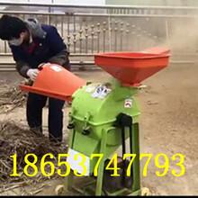 樹枝粉碎機重慶單相電粉碎機玉米飼料粉碎攪拌機圖片