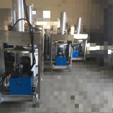 桑葚壓榨機,菠菜收汁壓榨機,單桶壓榨機,蔬菜收汁壓榨機
