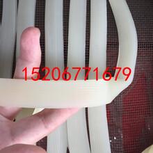 土豆粉條機價格臺灣電加熱多功能粉條機圖片