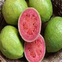 黄埔区新鲜水果配送中心图片