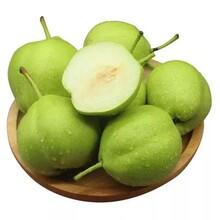 增城水果配送价格图片