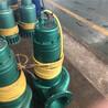 污水污物排污泵