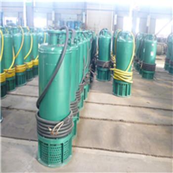 湖南四葉輪防爆強排泵BQS200-240/4-220/N內裝式污水排污潛水電泵