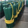 內裝式污水水泵
