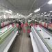供應滌綸網紗生產絲印網紗白網銷售印刷網紗黃網