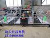 养猪设备厂家母猪产床厂家直销仔猪专用栏圈