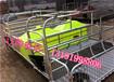 母猪产床规格2.13.6河北养猪设备母猪产床优点