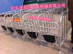 定位栏带十个钢板食槽母猪定位栏的优势