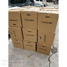 深圳安普网联超五类屏蔽网线219413-2(原安普品牌)图片