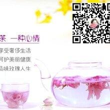 唯梦玫瑰花茶--理气解郁的女性养生佳品图片