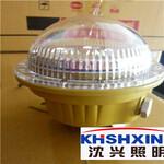 SXD920防爆免维护LED照明灯图片