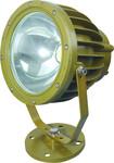 防爆灯LED照明灯100W图片
