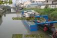 湖北省沙德乡大型鱼塘清淤设备