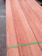 柳桉木价格柳桉木厂家柳桉产品质量—易洲木业长年供应柳桉木图片