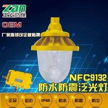 正安防爆厂家批发NFC9132防眩泛光灯图片