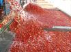 小型番茄汁饮料生产线-番茄酱生产加工设备