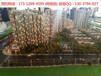 吴江35平米精装修公寓火爆出售吴江盛泽国贸中心