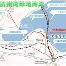 宁波杭州湾绿地海湾有哪些优缺点?有谁知道。价值分析一下!图片