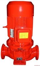 厂家供应优质消防泵XBD4.0/5-65室内消火栓泵