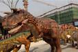 租售展览活动道具鲸鱼岛恐龙模型VR科技设备雨屋海洋展变形金刚